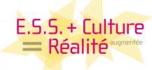 ESS + culture